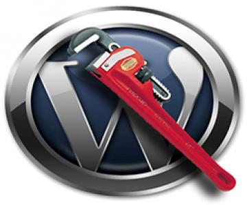 Kaip reklaminį skydelį patalpinti WordPress TVS?